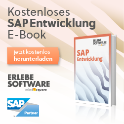 SAP_Entwicklung_Ebook__Facebook_250x250_2017