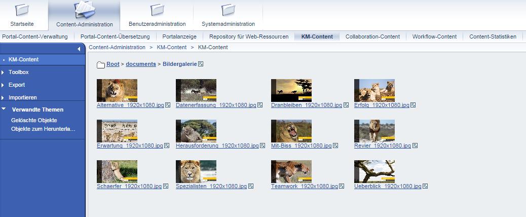 SAP Portal Einblick in die Bildergalerie