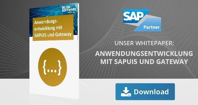 Anwendungsentwicklung mit sapui5 und gateway