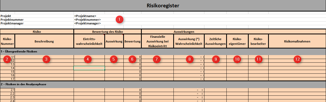 Risikomanagement für IT-Projekte