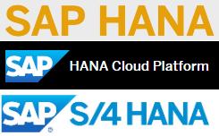 SAP HANA DB, HANA Cloud Platform, S/4HANA