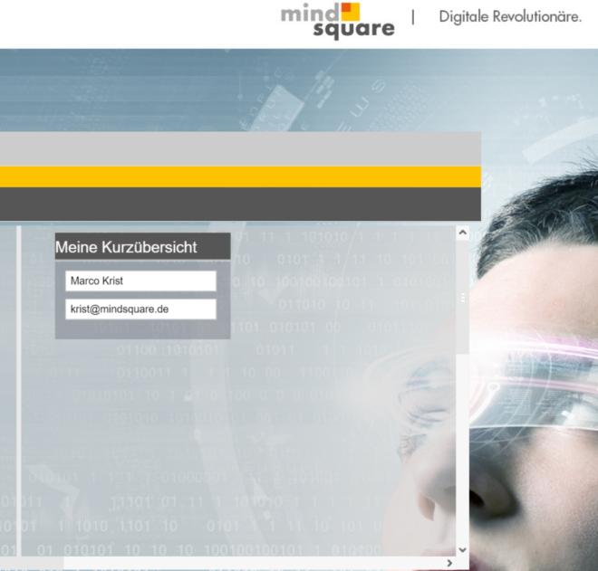 WebRFC Bausteine in SAP Screen Personas 3 0