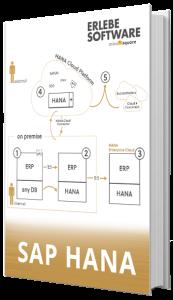 SAP HANA E-Book