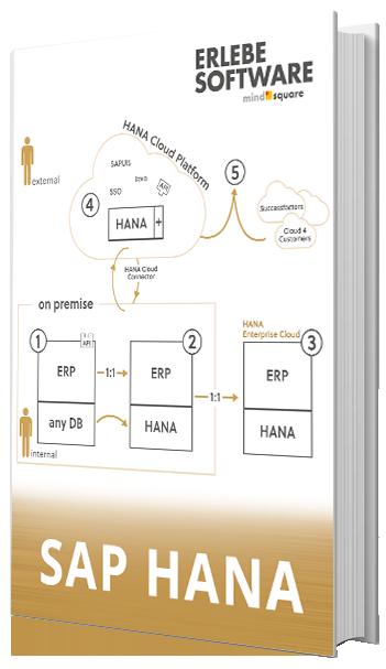 E-Book SAP User Experience