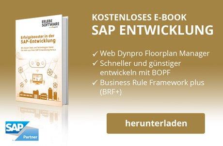 SAP Entwicklung E-Book