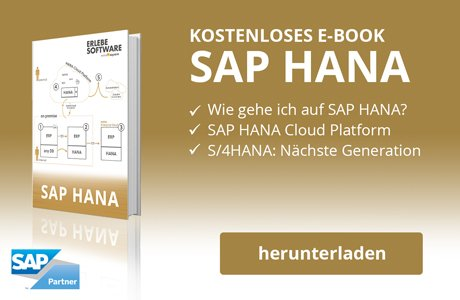 SAP HANA E-Book