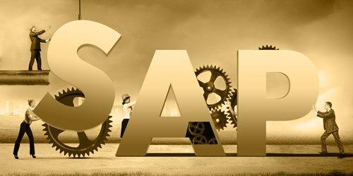 SAP Entwicklung Kategoriebild