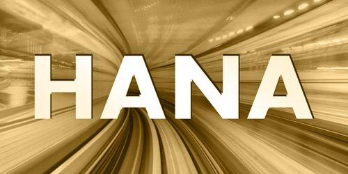 SAP HANA Kategorie