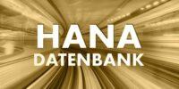 SAP HANA DB Kategorie