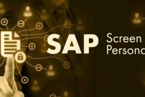 SAP Screen Personas Kategorie