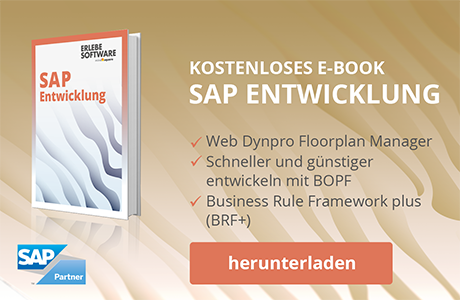 Conversionbild_SAP_Entwicklung_E-Book