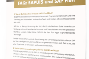 ErlSoft_CP_Partner-FAQ-SAPUI5-Fiori