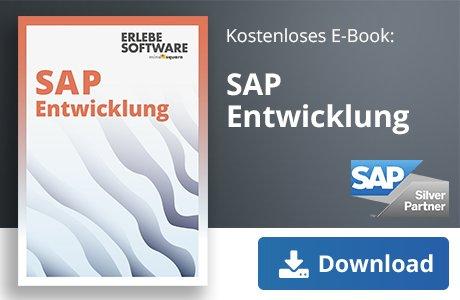 SAP HANA Entwicklung